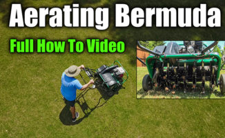 aerating lawn how to