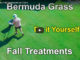 fall bermuda grass treatments