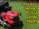 should you bag lawn clippings
