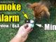 small smoke detector
