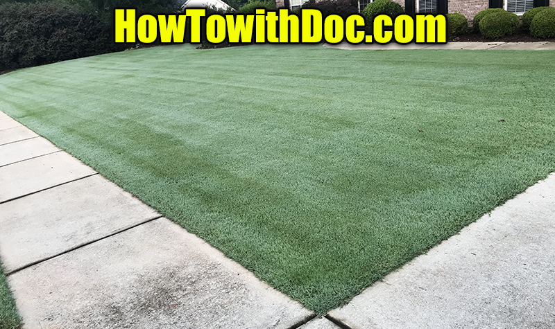 bermuda grass summer fertilizer