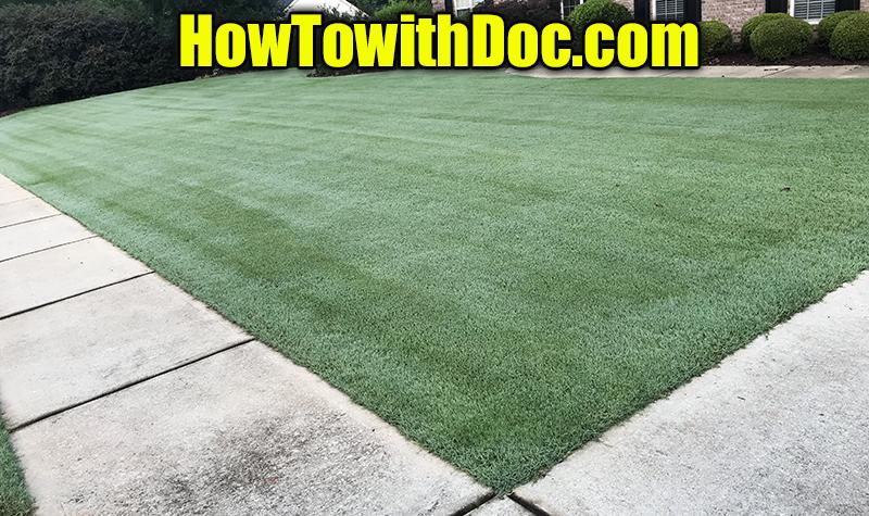 bermuda grass summer fertilizer