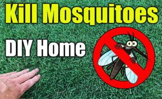 mosquito control sprays