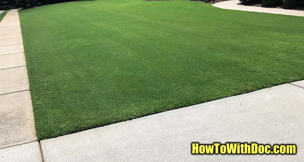 thick bermda grass lawn