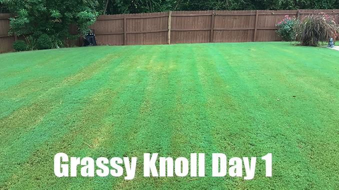 organic lawn fertilizer test