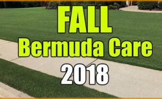 fall bermuda care