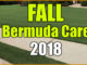 fall bermuda care
