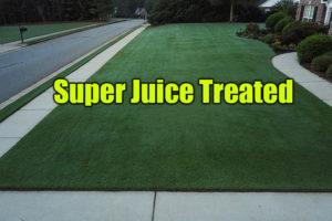 super juice treated lawn