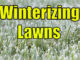 winterizing lawns