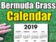 bermuda grass calendar 2019 678