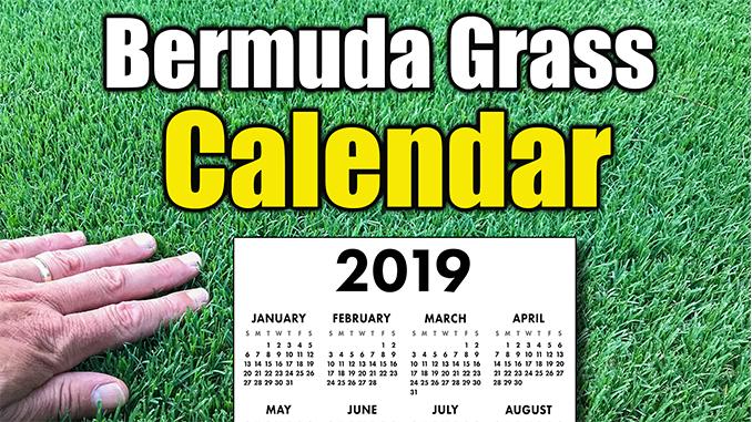 Bermuda Grass Calendar 2019