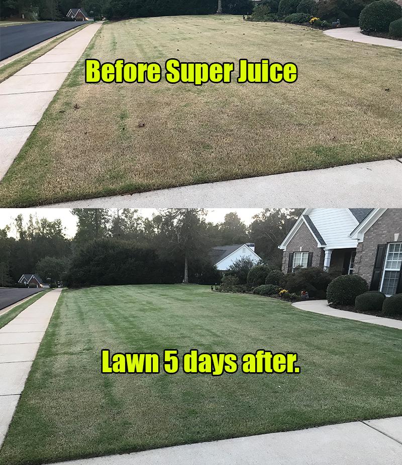 Super Juice Lawn Fertilizer