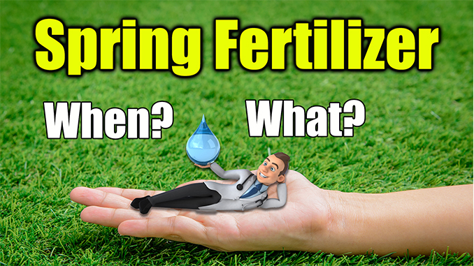spring lawn fertilizer
