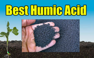 humic acid for lawns