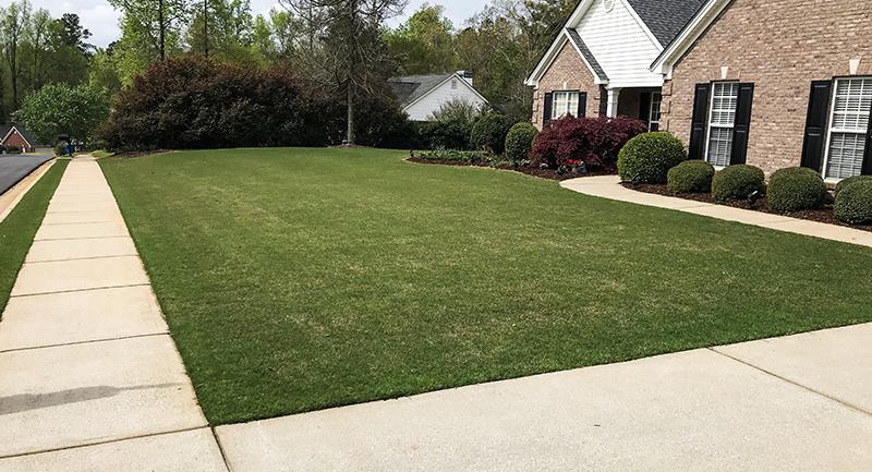 soil test lawn