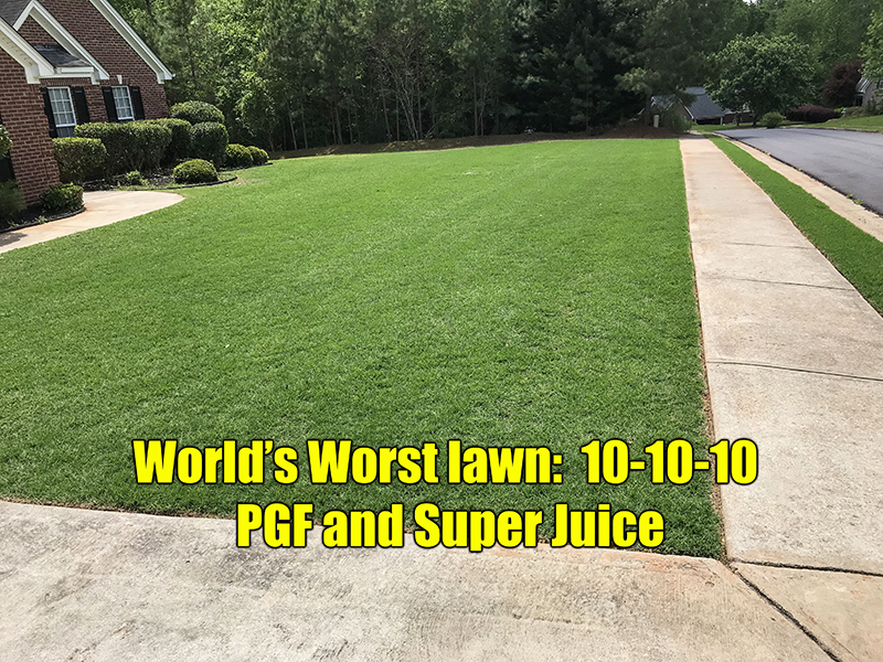 How To Get Thick Green Lawn Spring Lawn Care