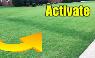 fast green lawn fertilizer
