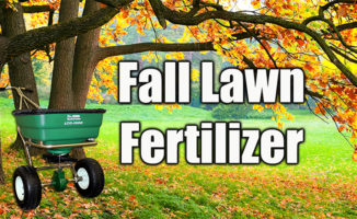 fall lawn fertilizer