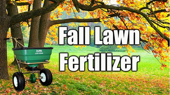 fall lawn fertilizer