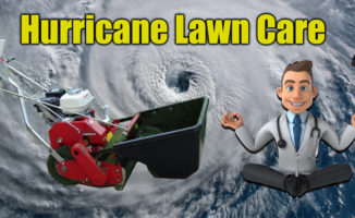 hurricane lawn care