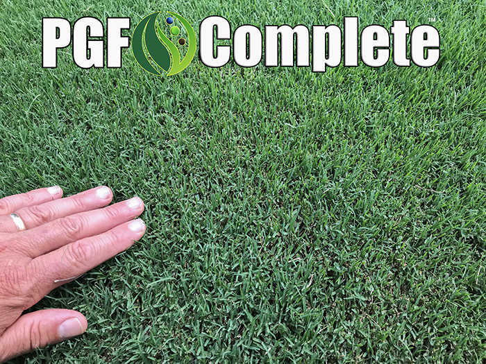 pgf complete fertilizer results bermuda