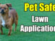 pet safe lawn products