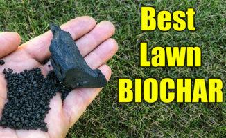 best lawn biochar