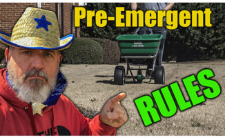 spring pre emergent how to