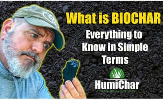 what is biochar