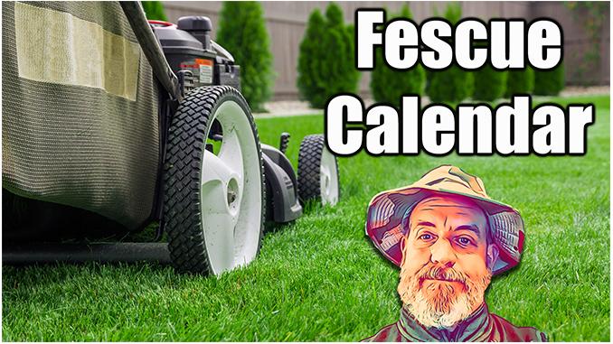 Fescue Lawn Care Calendar