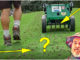 how to aerate lawn