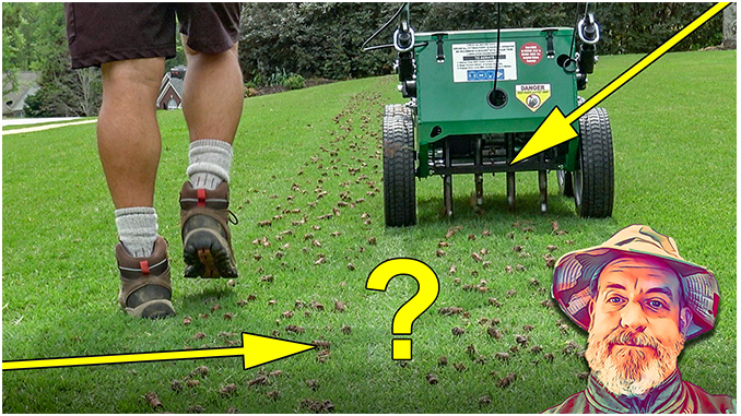 Ho to Aerate Your Lawn