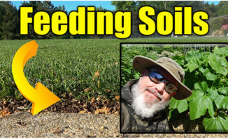 feeding soil lawn and garden