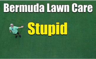 bermuda lawn care summer
