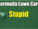 bermuda lawn care summer