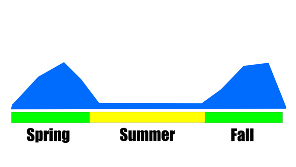 summer fertilizer cool season grass