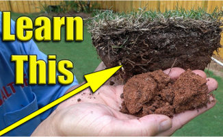 improve lawn soil humichar