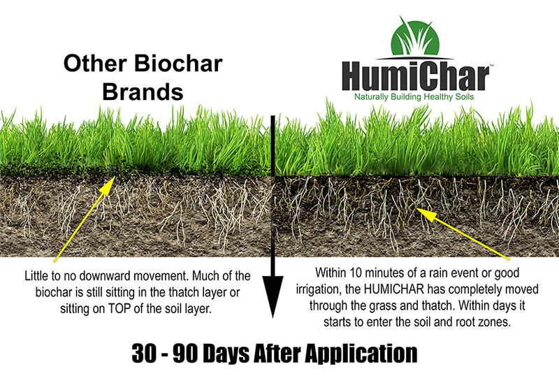 improve lawn soil