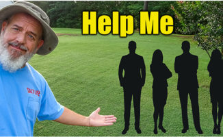 lawn care fall planing