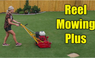 reel mowing lawns