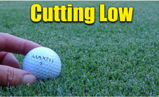 short cutting bermuda grass