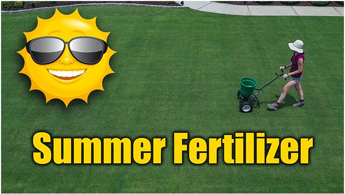 Best Summer Lawn Fertilizer