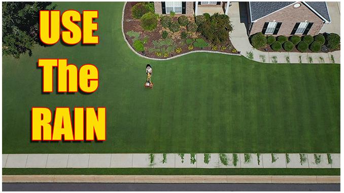 heavy rain lawn care