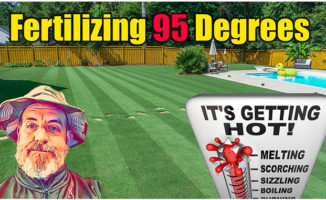 hot weather lawn care