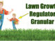 lawn growth regulator