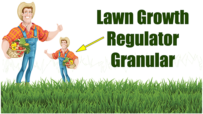 Hot to Use Lawn Growth Regulators