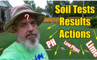 lawn soil test results