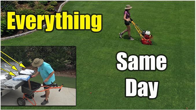 summer lawn treatments