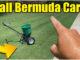 fall bermuda lawn care