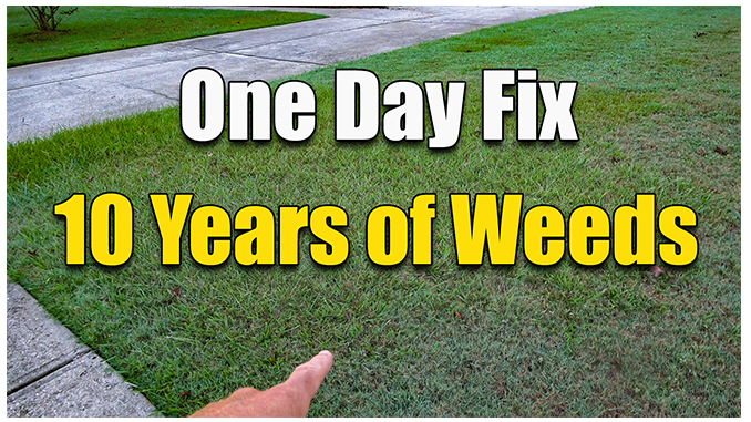 fixing an ugly lawn